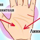 Պահապան հրեշտակի գիծը՝ ձեռքի ափում. կա՞ արդյոք այն Ձեզ մոտ
