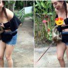 Կապիկն անսպասելի թռել է աղջկա վրա ու շորն իջեցնելով՝ մերկացրել նրա կուրծքը (տեսանյութ)
