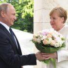Սպիտակ վարդեր. Պուտինը Մերկելին ծաղիկներ է նվիրել (լուսանկարներ)
