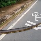 Բրազիլիայում հսկայական անակոնդան փակել է փողոցը (տեսանյութ)