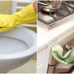 Խոհանոցային անձեռոցիկները ավելի կեղտոտ են, քան զուգարանակոնքի նստատեղը