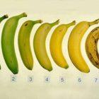 Ե՞րբ է ավելի ցանկալի ուտել բանանը՝ հասա՞ծ, թե՞ կիսահասած վիճակով