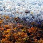Նոյեմբերի 12-ին Հայաստանի մեծ մասում ձյուն կտեղա
