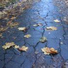 Եղանակը Հայաստանում. ջերմաստիճանը նվազում է. Երեւանում սպասվում է անձրեւ
