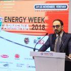 Կառավարությունը ձեռնամուխ է եղել Հայաստանի էլէներգիայի շուկայի փուլային ազատականացման գործընթացին. Ավինյան