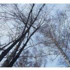 Եղանակը Հայաստանում. սպասվում են տեղումներ, այդ թվում ձյուն