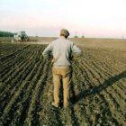 Սուբսիդավորում. գյուղացիները կարող են վարկ վերցնել 5 տոկոսով, գյուղկոոպերատիվները՝ 3 տոկոսով