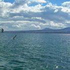 2002 թվականից հետո Սեւանա լճի մակարդակի բարձրացմանը զուգընթաց նվազել ջրում քլորոֆիլ a-ի պարունակությունը