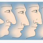 Ինչ կարող է պատմել մարդու մասին քթի ձևը
