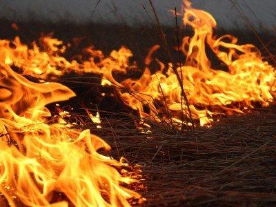 Գոմք գյուղում բռնկված հրդեհի հրդեհաշիջման աշխատանքները վերսկսվել են
