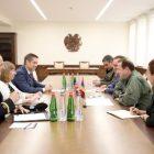 Դավիթ Տոնոյանն ԱՄՆ դեսպանի հետ քննարկել է պաշտպանության ոլորտում համագործակցության հարցեր