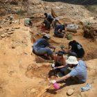 Հնէաբանները հայտնաբերել են 260 մլն տարի առաջ տեղի ունեցած 6-րդ զանգվածային բնաջնջման հետքերը