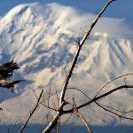 ՀՀ տարածքում դեկտեմբերի 9-13-ը սպասվում է առանց տեղումների եղանակ
