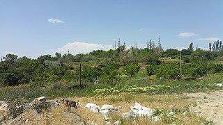 Դալմայի այգիներում կա պատմամշակութային մեծ արժեք ներկայացնող համալիր.Բորիս Գասպարյան