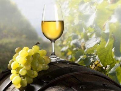 Հայաստանում առաջին անգամ արտադրվել է հավաստագրված օրգանական գինի, ինչն անչափ կարեւոր է ե՛ւ գինեգործության, ե՛ւ երկրում օրգանական գյուղատնտեսության հետագա զարգացման համար