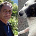 «Դիլիջան ազգային պարկ» ՊՈԱԿ-ի տնօրենին մեղադրանք է առաջադրվել՝ կենդանու նկատմամբ դաժան վերաբերմունք դրսևորելու համար